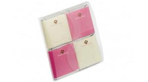 Pochette transparente bicolore Damier